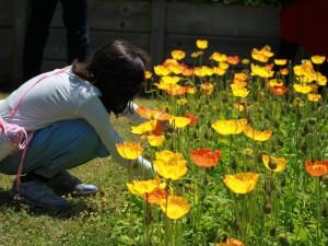 2017.9.17花の文化園