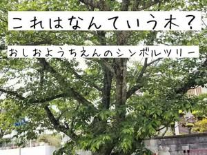 2020.5.26 おしお幼稚園