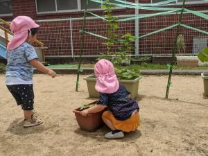 2020.6.23 おしお幼稚園